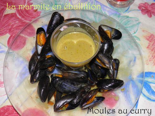 MoulesAuCurry (2)