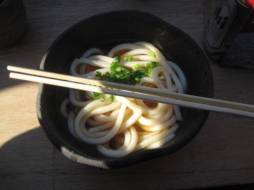 Shikoku-Muchujin 9479