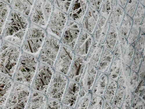 neige-9.jpg