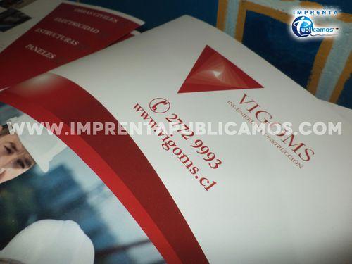 Vigoms Carpetas (2)