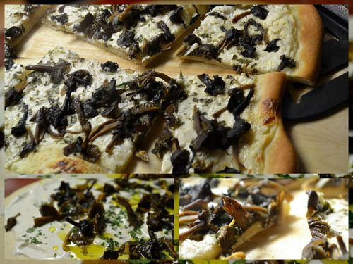 pizza-aux-chanterelles-et-creme.jpg