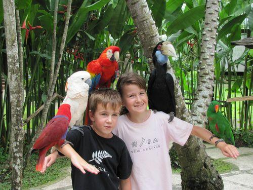 Parc ornithologique de Bali 5