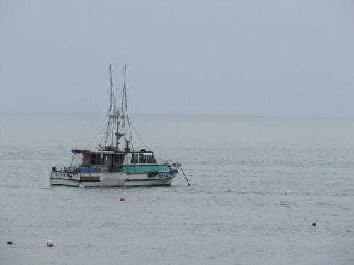 Jackson Bay 3