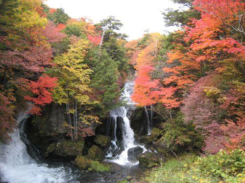 Hello Japan - Cascade en Automne 神橋