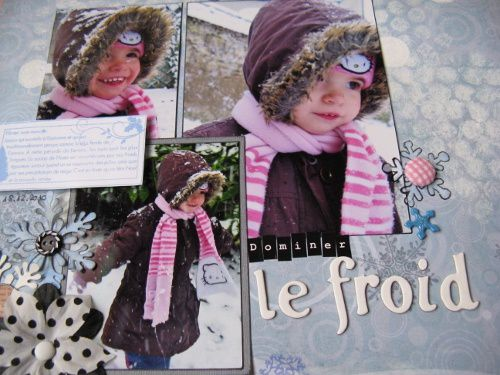 Dominer-le-froid 7247 (500x375)
