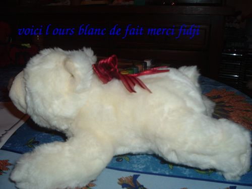 ours-blanc.jpg