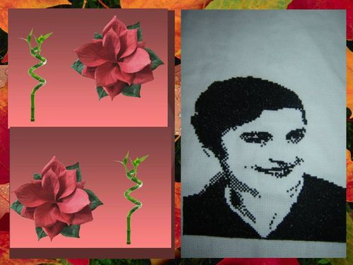 collage 2012-10-31 18-50-02