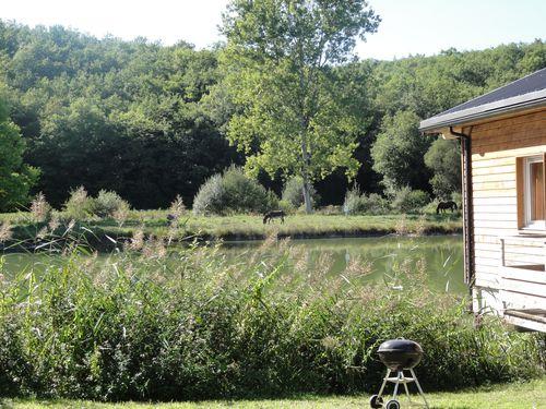 barbecue-au-bord-du-lac.JPG