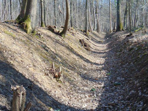Route-Fontaine-Ursine-12-03-15-LEPERE--b-.JPG