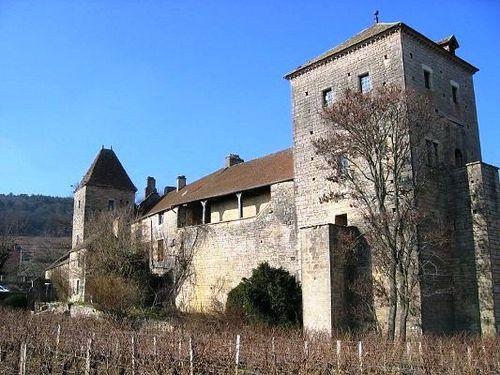 Le-chateau-de-Gevrey-Chambertin.jpg