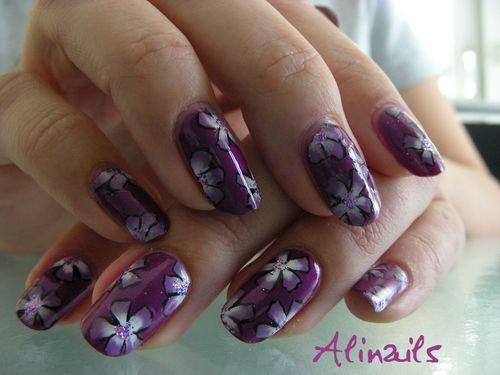 Violettes violettes 1