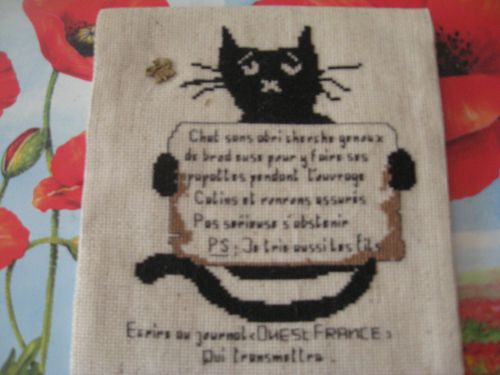 ronde-chat-Mamie-RO 2396