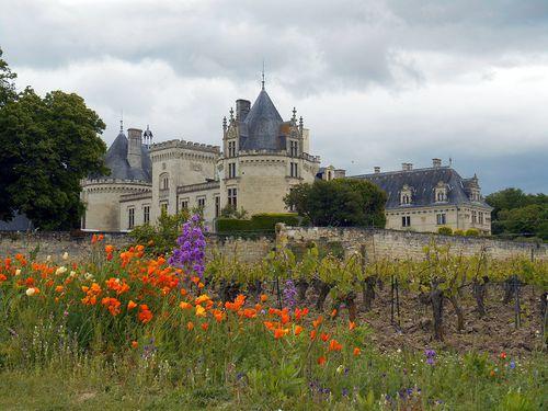 Chateau et velo Loire' 027