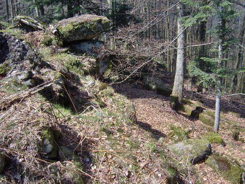 roche pierre piquee neuvevoie derzognier 015