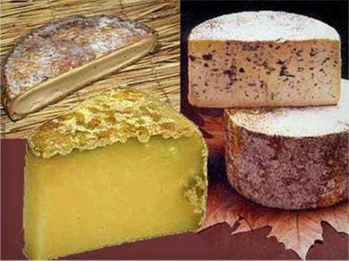 fromages-cantal-1