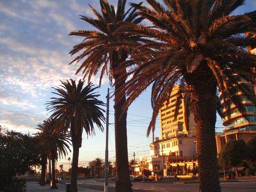 St Kilda By night9