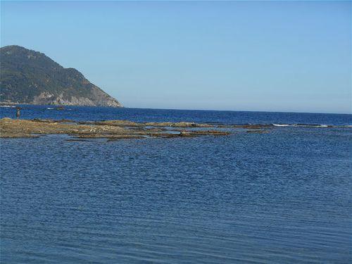 *L'île du Gaou 5