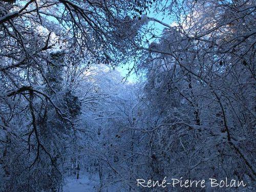 hiver dernier 02