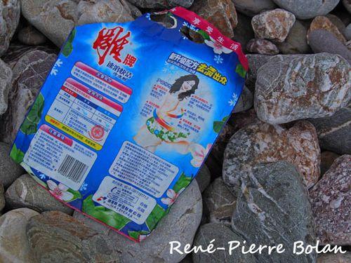 PB210030 déchets asiatiques