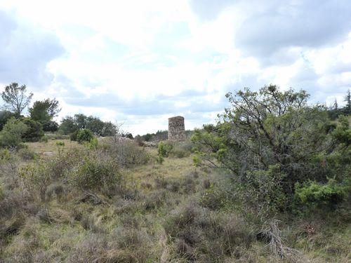 mar13-Caunes Minervois - 39