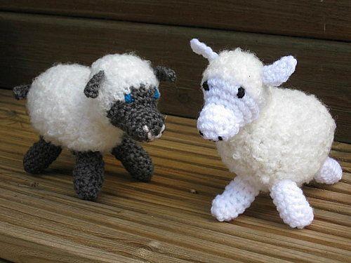 mouton--4--2-.jpg
