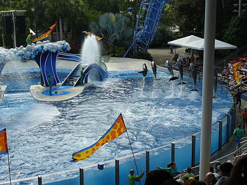 Sea-World---Orlando--14-.jpg