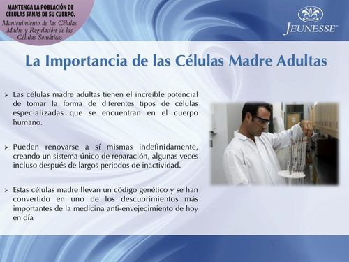 CELULAS-MADRES-copie-2.jpg