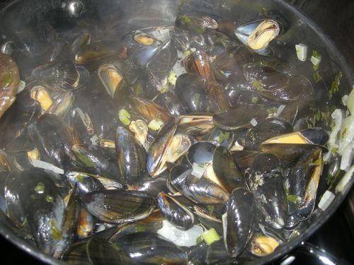 Moules-marinieres--4-.jpg