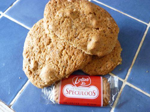 cookies-speculos.JPG