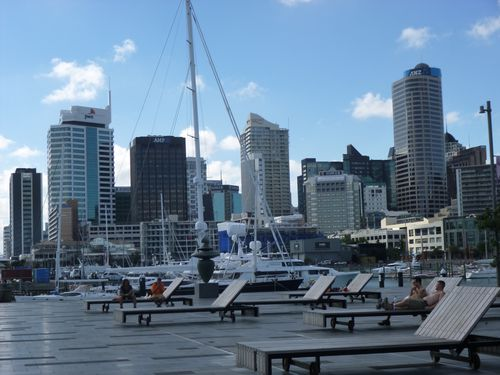 Majestueuse Baie d' Auckland 051