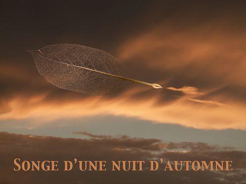 1167-nuage-feuille-plume-ok.jpg