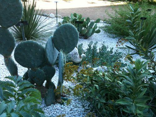 jardin-botanique-museum4.JPG