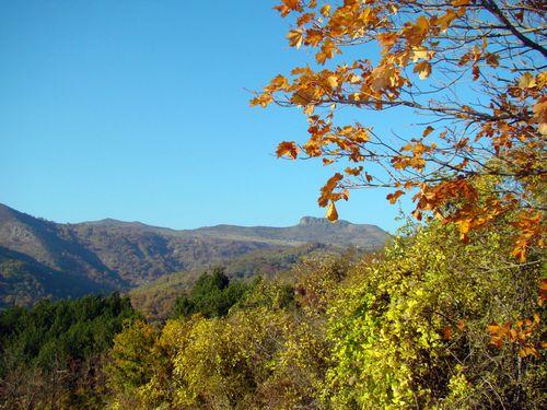 drôme automne causse paysage provence