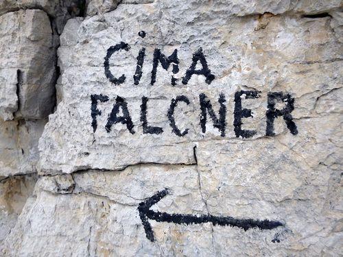 CIMA FALCNER 0