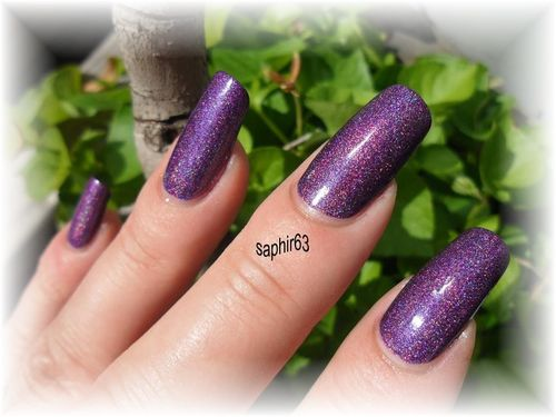 wild-at-heart-holo--2-.JPG