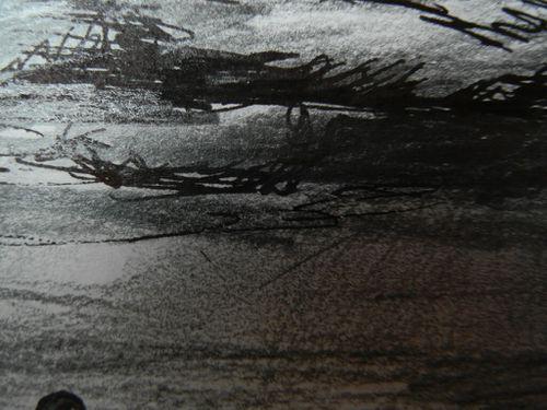 paysage_3.JPG