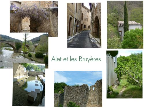 collage 2012-04-25 12-01-44