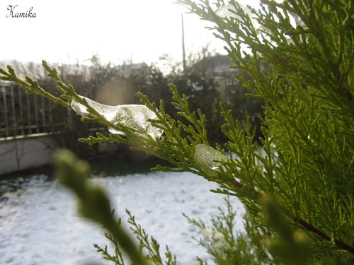 photos d'hiver 1