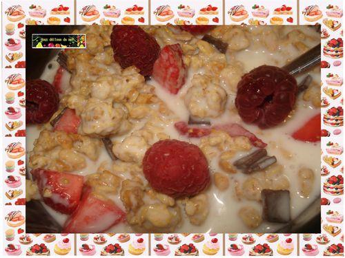 Cereales-crunchy-au-yaourt-et-fruits-rouges--1--copie-1.JPG