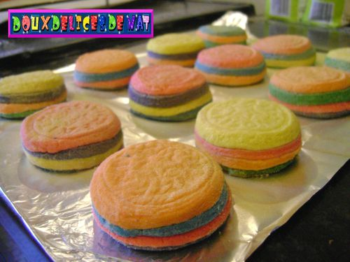 Sables-rainbows--2-.JPG