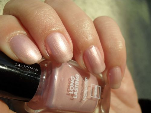 Hema Long Lasting rose 2