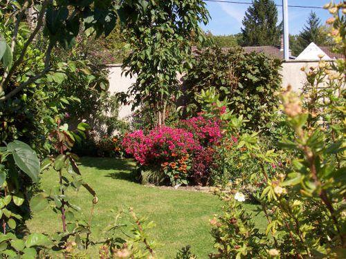 Septembre au jardin du chat vert le blog de for Jardin du pic vert