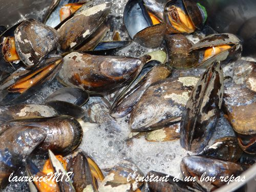 moules-ouver-tes.jpg