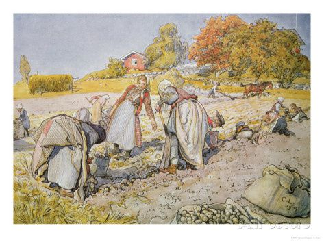 carl-larsson-digging-potatoes-1905.jpg