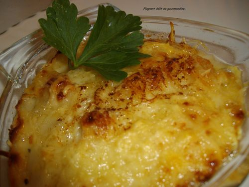 Coquille-saint-Jacques-sauce-creme-gratinee.JPG