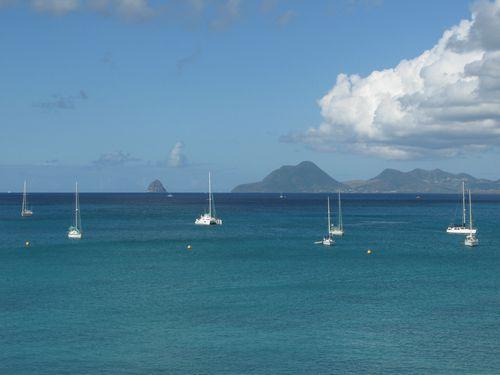 Martinique janv2008 - Li 139