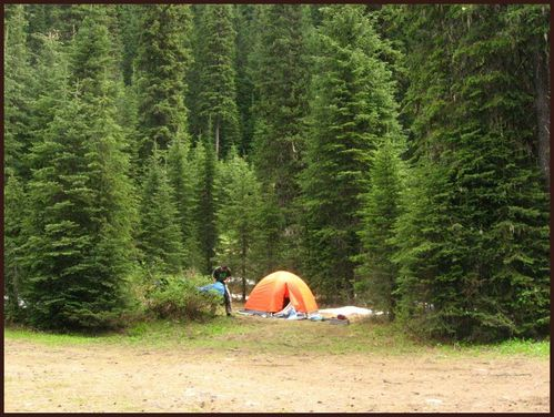 colville-forest-camping-179.jpg