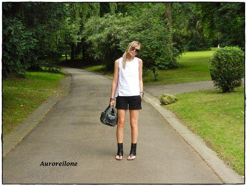 Auroreilone 2 050