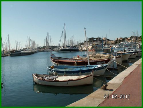 pointus-port-de-Bandol.JPG