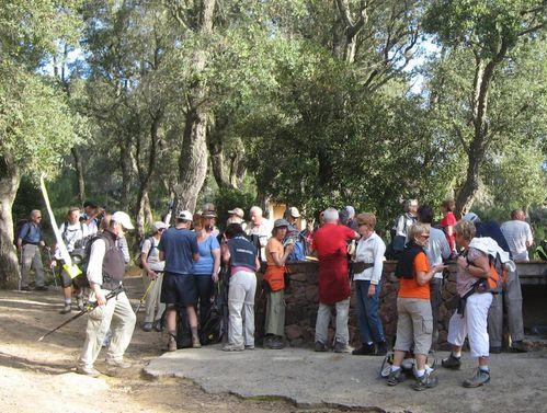 2011-04-07-Le chemin du Castellas -8